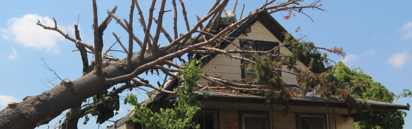 5 Star Restoration Specialists Disaster Restoration Services