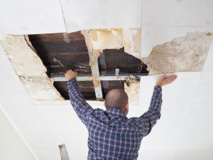Will Your Insurance Cover a Restoration Specialist?
